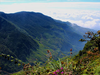 Horton Plains - Worlds End